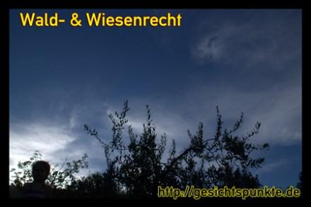 Banner Wald & Wiesenrecht