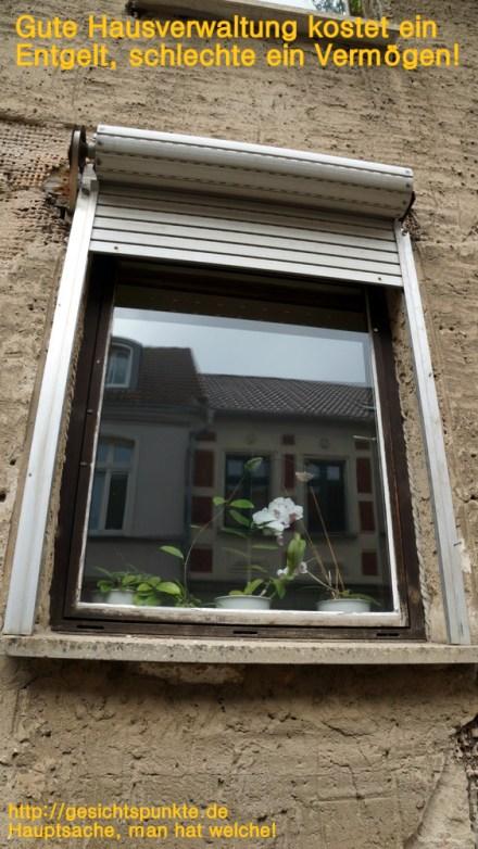 Gute Hausverwaltung kostet ein Entgelt, schlechte ein Vermögen.