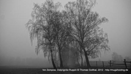 Vor Zempow, Ostprignitz-Ruppin