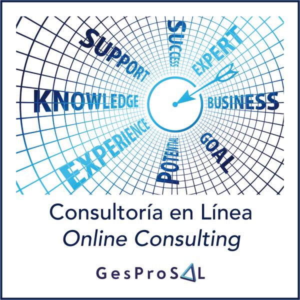 Consultoria Online 1
