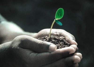 1 – Le contact organisme – environnement