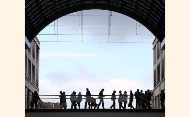 Conoce A Las 20 Compañías Más Sostenibles Del Mundo Según