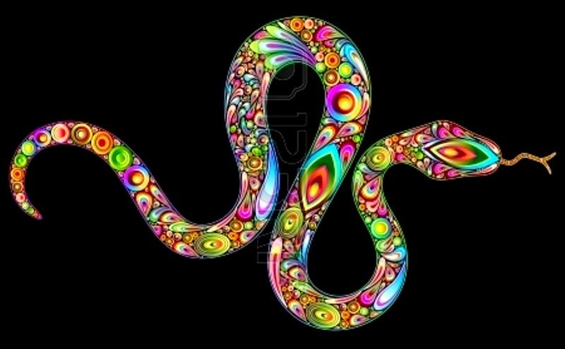 La serpiente que salvó una vida