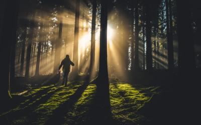 El despertar espiritual : ¿Cambio de estado o cambio de entorno?