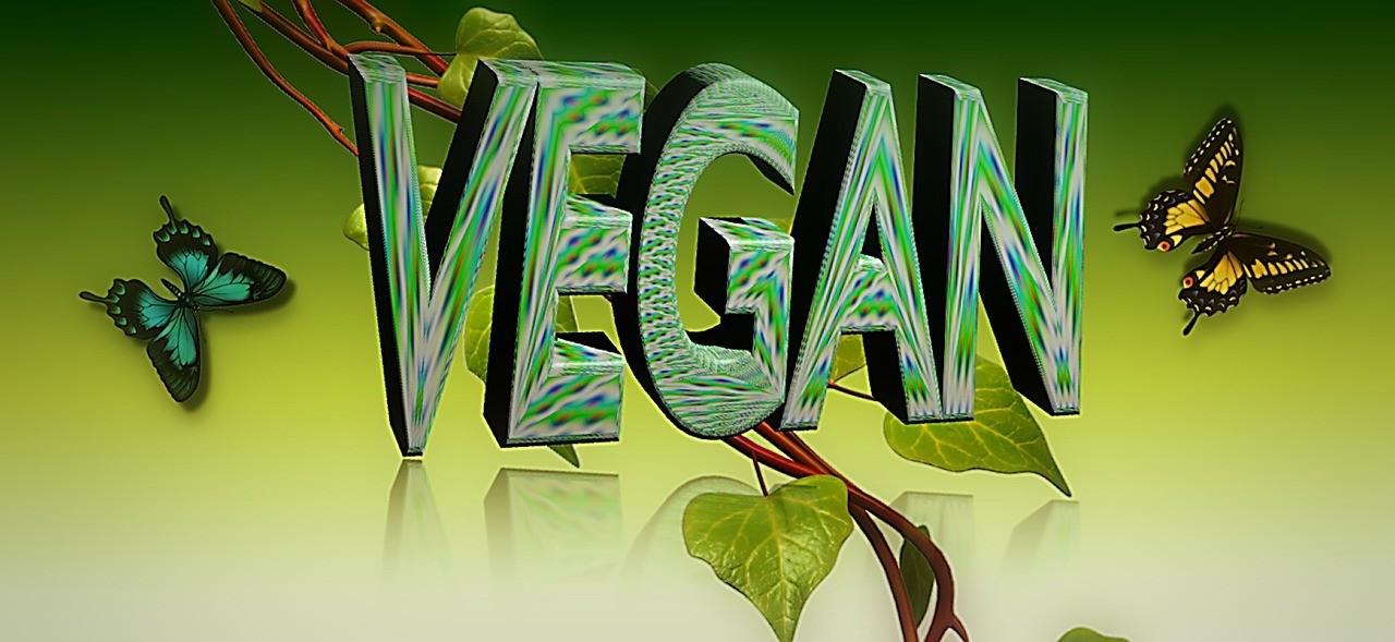 vegan ungesund