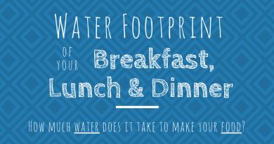 Water Footprint Of Food Header Image