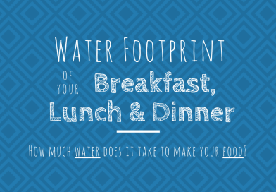 What is the Water Footprint of a typical Breakfast, Lunch and Dinner? [Infographic]