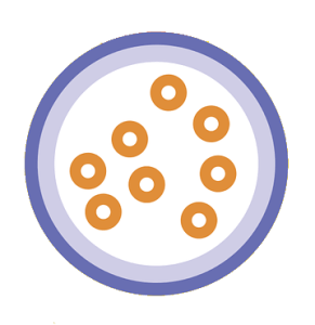 cereal bowl with milk: water footprint