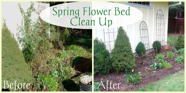Spring Flowerbed Clean Up