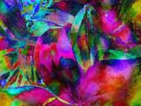 60+ 4K UHD Wallpaper Colorful Paint Notion | >>> Best ...