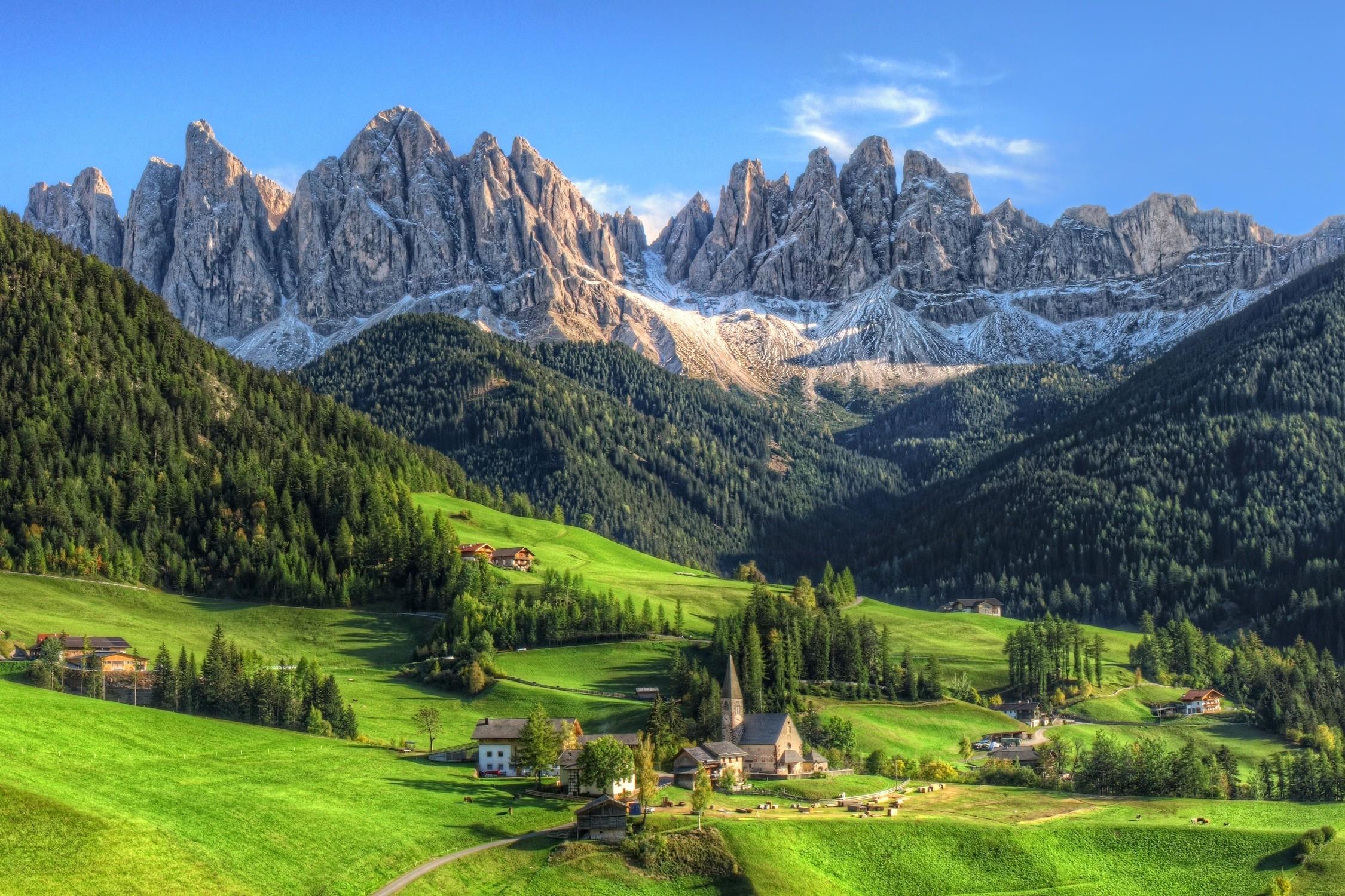 Sfondi  paesaggio foresta montagne natura erba verde
