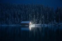 Wallpaper Sunlight Landscape Lights Forest Night