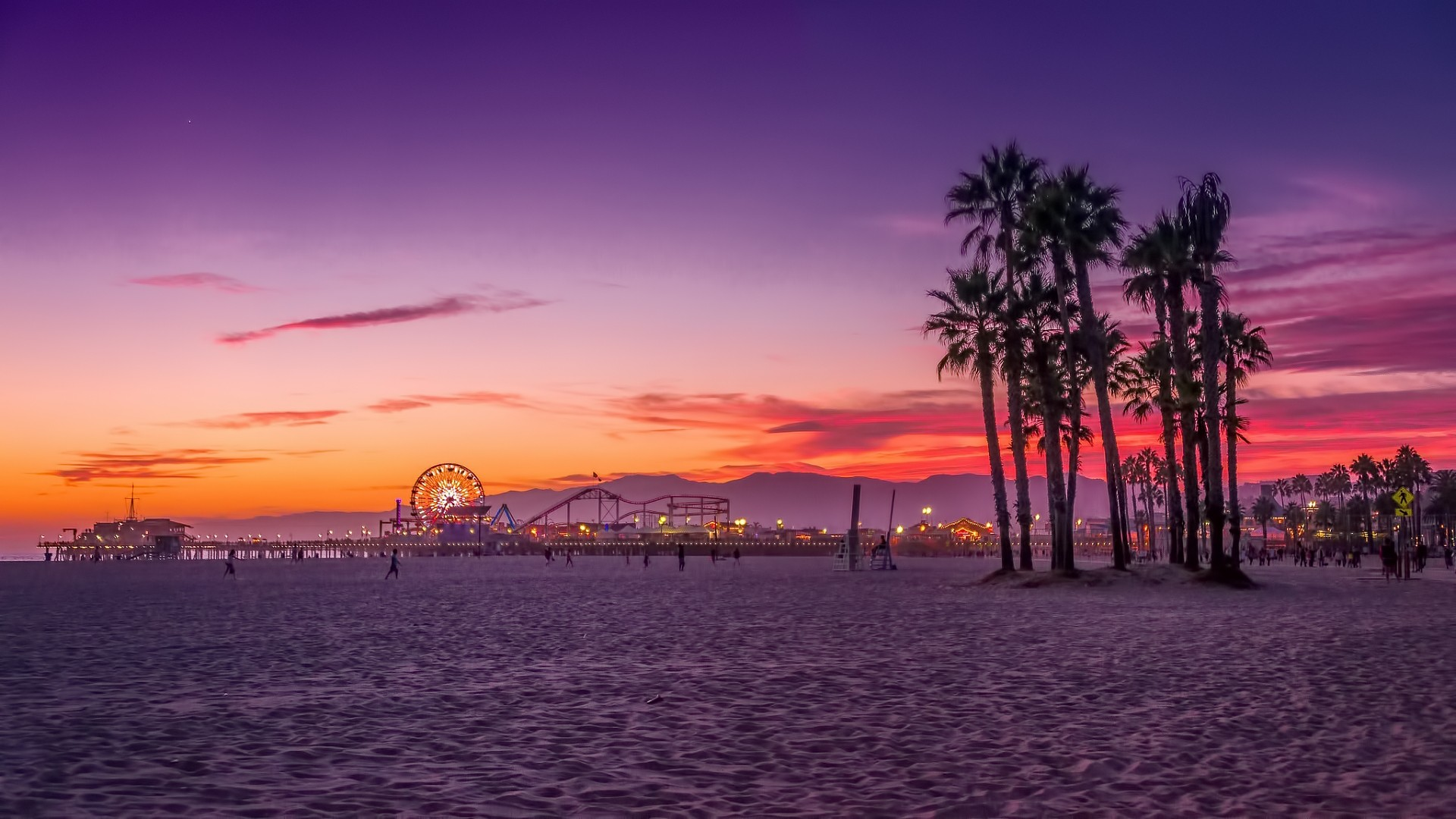 Los Angeles Palm Trees Sunset