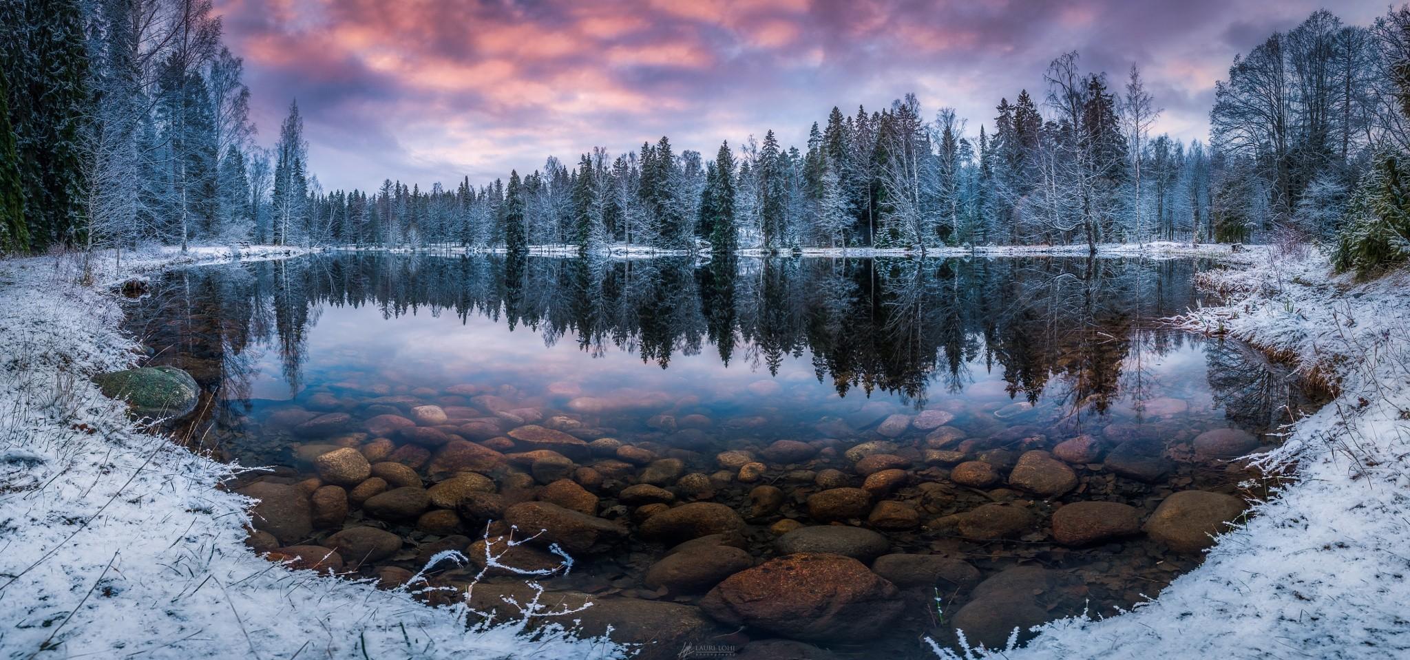 Sfondi  alberi paesaggio foresta lago acqua