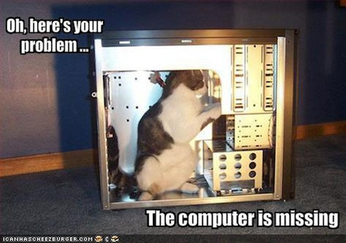 funnies computer missing cat
