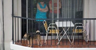 Muere un perro tras caerse desde un 7º piso en Juan de la Cierva