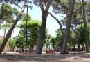 El lamentable estado del Parque Lorenzo Azofra y la posible instalación de quioscos en las zonas verdes en GETAFE DESPIERTA