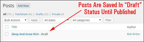 How To Create A New WP Post - Step-By-Step Guide