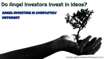 Do Angel Investors Invest In Ideas?