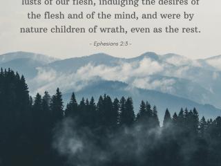(25) Ephesians 2_3