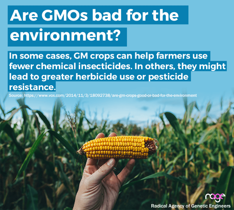 are-gmos-bad-for-the-environment