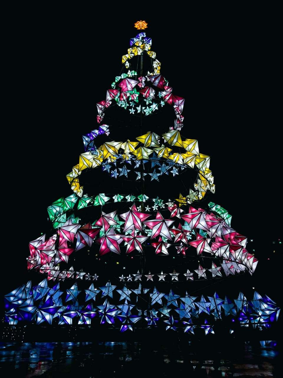 Bayawan Christmas Tree
