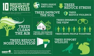 benefits-planting-trees-infographic