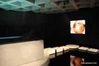 24-Mona Museum 11-1-2011 8-17-19 PM