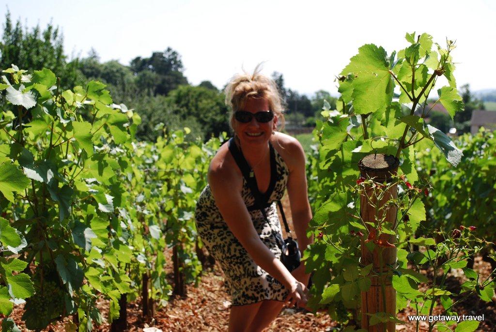 15-Burgundy France Wine Tour 7-27-2013 9-44-04 AM