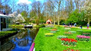 7-Keukenhof gardens-092