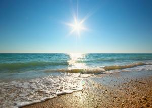 Coast of beach