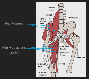 How we fixed a chronic groin strain… | Claire Minshull