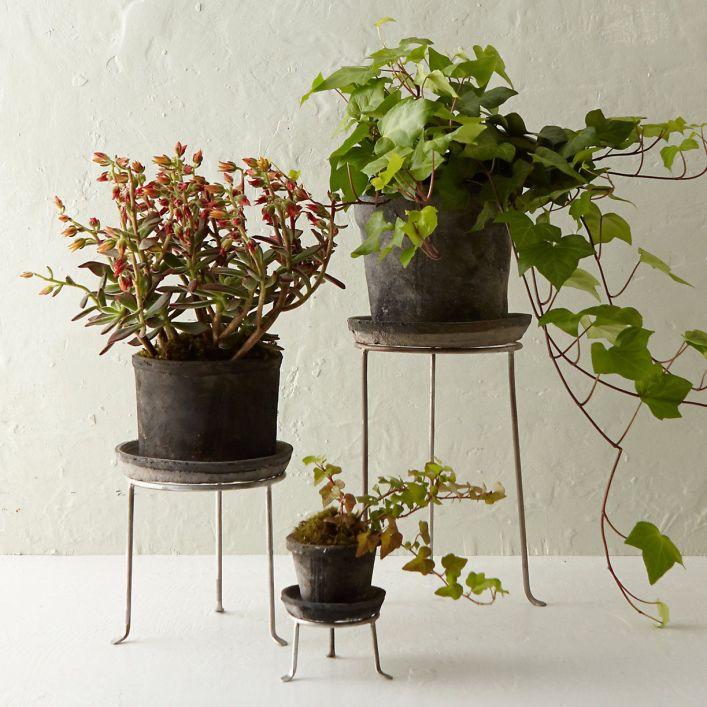 Famous undefined #diyplantstandideas #plantstandideas #plantstand