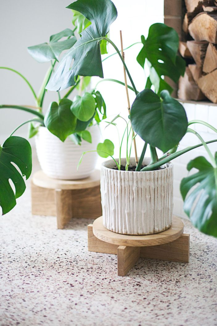 Breathtaking wall plant hanger #diyplantstandideas #plantstandideas #plantstand