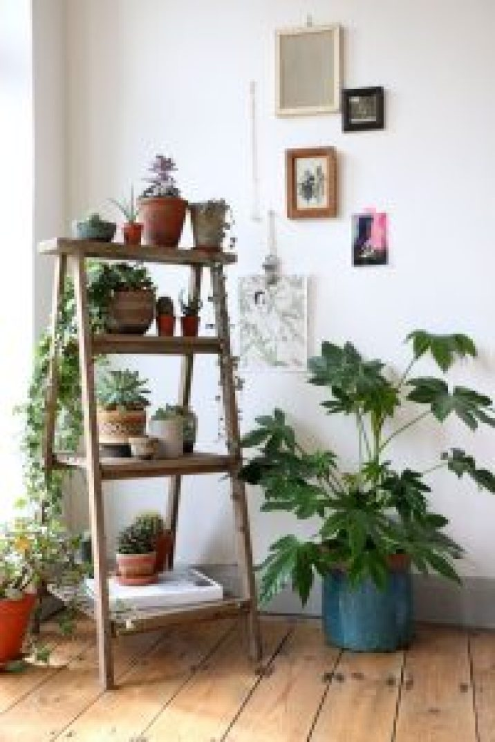 Surprising planter with wood stand #diyplantstandideas #plantstandideas #plantstand