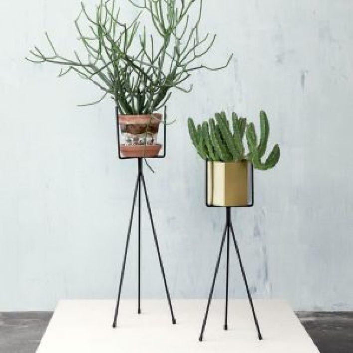Unbeatable wall plants indoor #diyplantstandideas #plantstandideas #plantstand