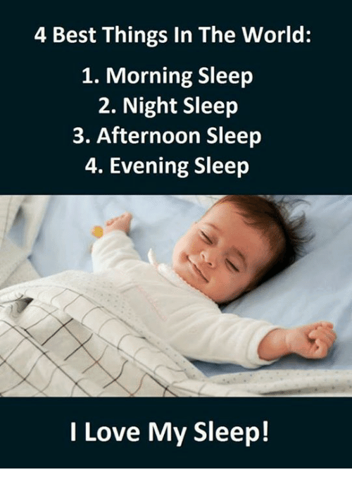 4 best things in the world, morning sleep, night sleep, afternoon sleep and evening sleep