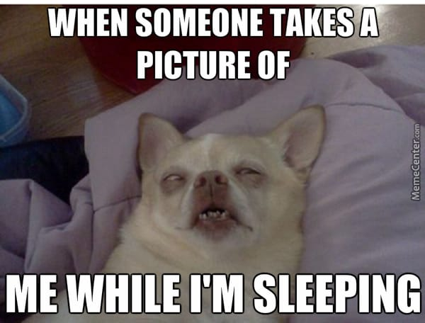 when someone takes a picture of me while Im sleeping?resize=600%2C456&ssl=1 the best sleep memes of the internet 2017 get best mattress
