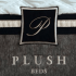 Plush bed mattress review