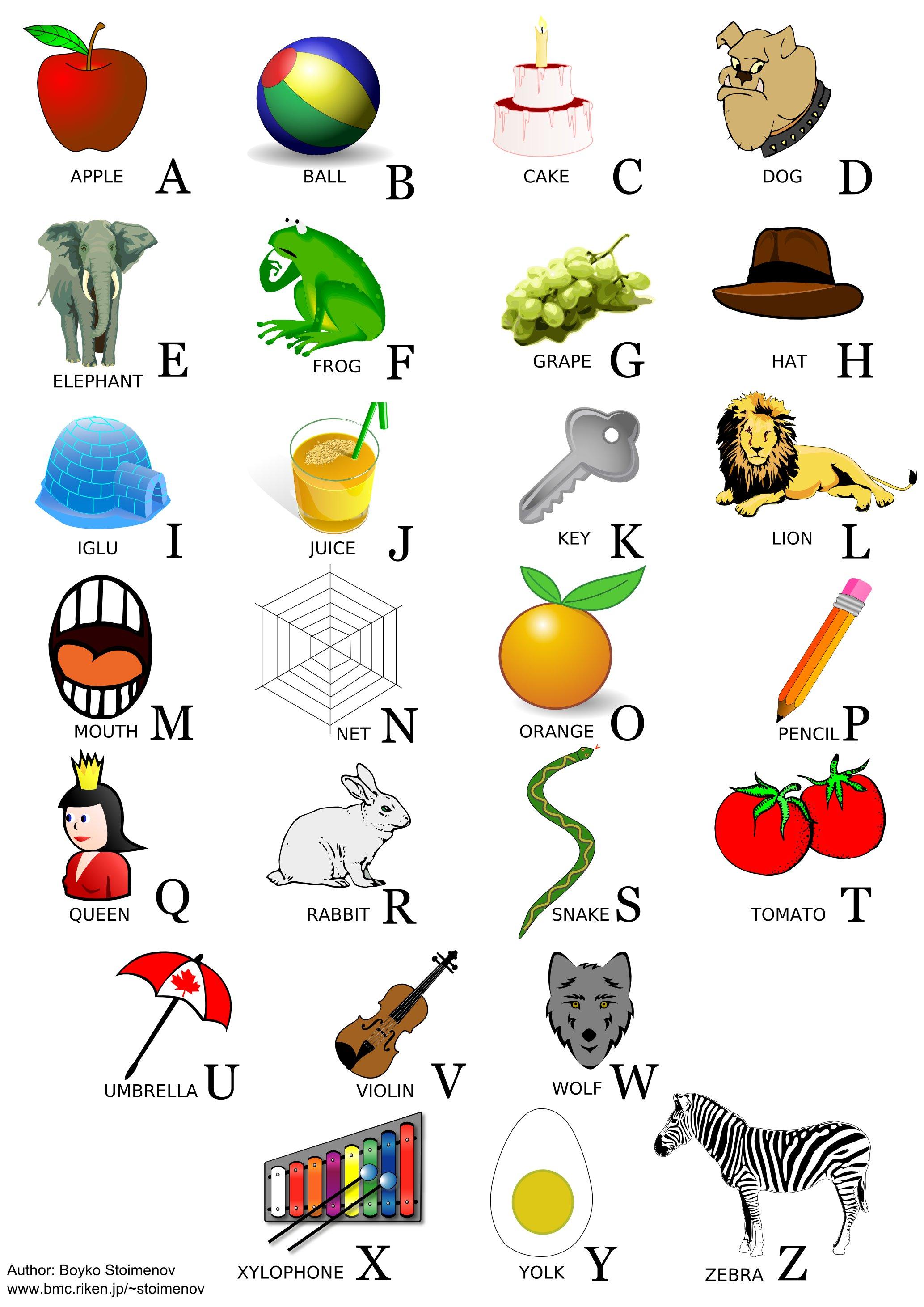 Childrens Alphabets