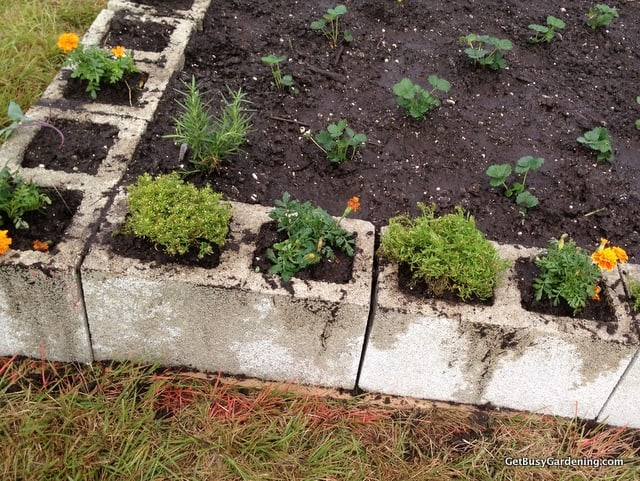 Building A Community Garden With The Troy