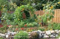 Backyard Vegetable Garden Design: How To Plan A Vegetable ...