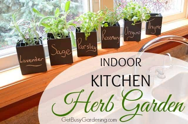 Indoor Kitchen Herb Garden Get Busy Gardening
