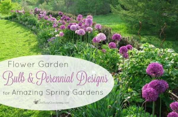 flower garden bulb and perennial