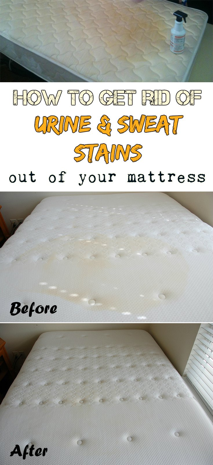 How to get rid of urine and sweat stains out of your