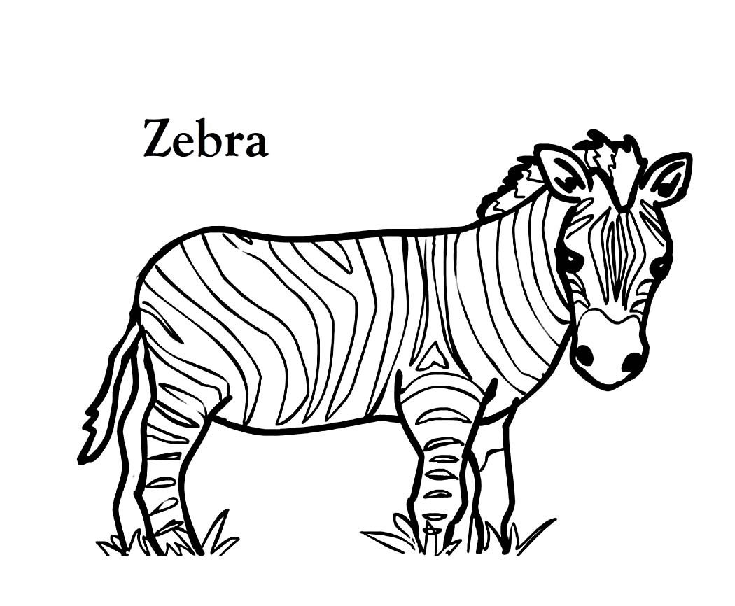 Animal Pattern Colouring Pages At Getcolorings