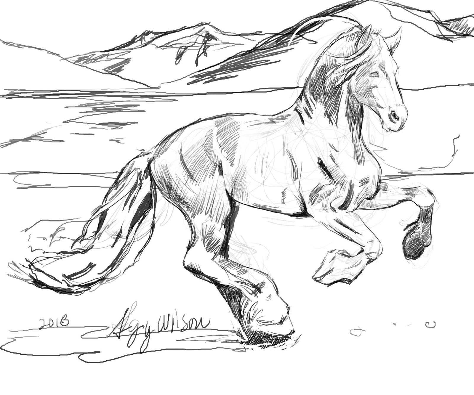 Appaloosa Horse Coloring Pages At Getcolorings