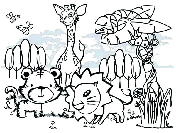Australian Animals Colouring Pages at GetColorings.com