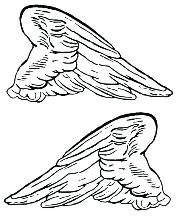 bird wings coloring pages at getcolorings  free