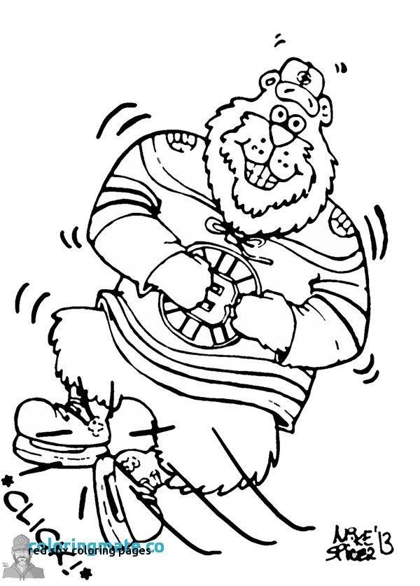 boston bruins coloring pages at getcolorings  free